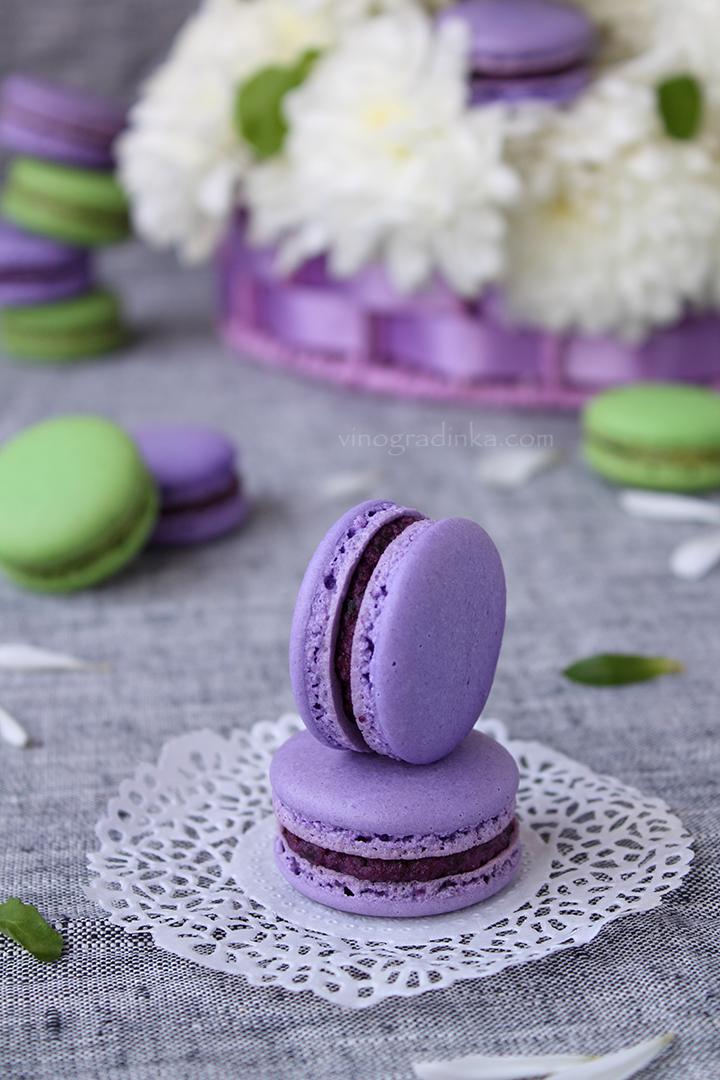 macarons с черникой и цветами