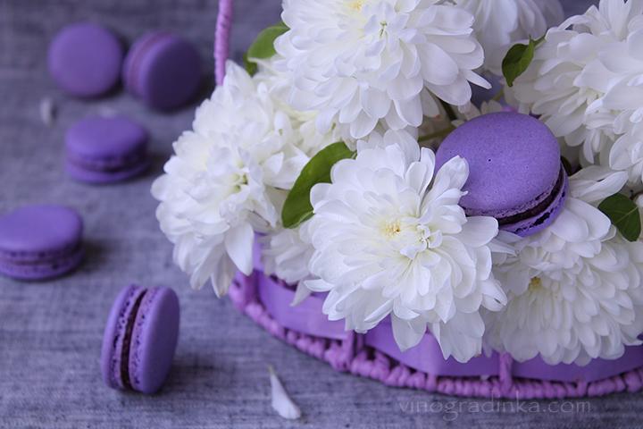 macarons черничные