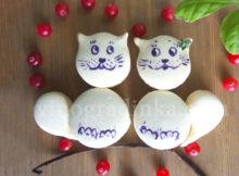 макаронс-коты